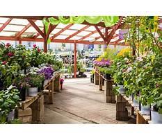 Best Garden centres local