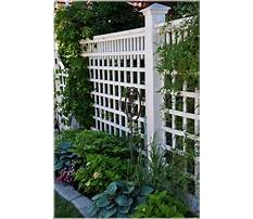 Best Garden fencing ideas pictures