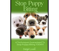 Best Get your puppy to stop biting