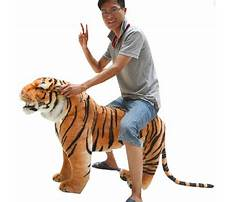 Best Giant tiger toy box