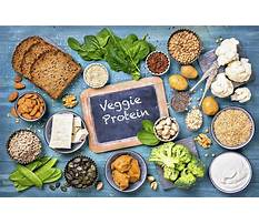 Best Give the function in the diet of fat