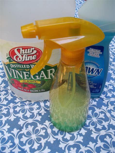 Glass-Shower-Door-Cleaner-Diy