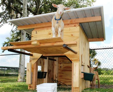 Goat Playground Building Plans