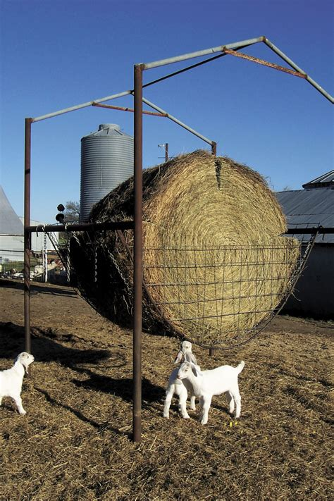 Goat Round Hay Feeder Plans