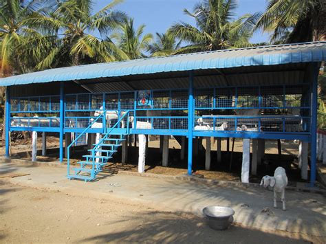 Goat Shed Designs In India