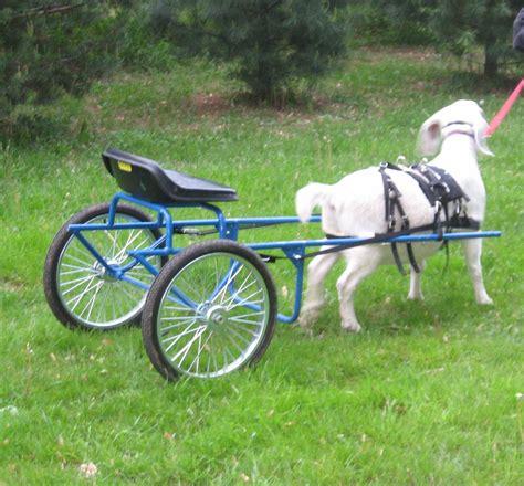 Goat-Cart-Plans