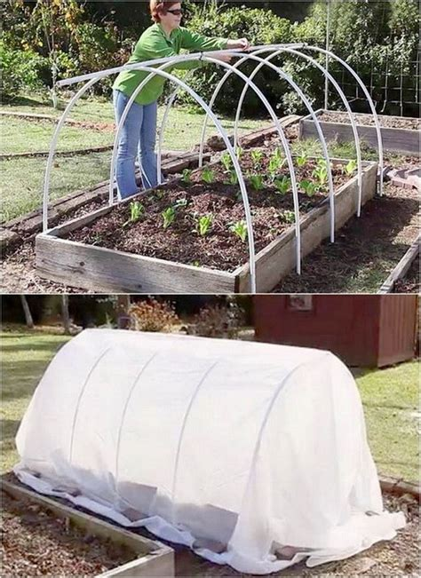 Good DIY Projects For Greenhouses