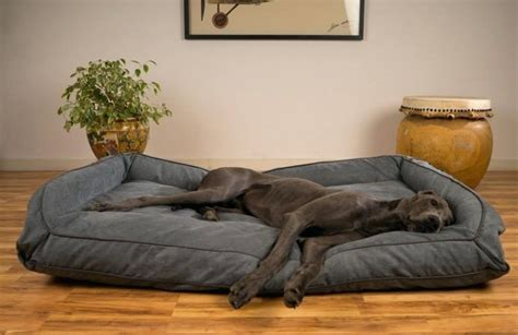 Great Dane Dog Bed Diy From Old