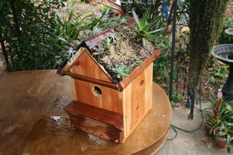 Green-Roof-Birdhouse-Plans