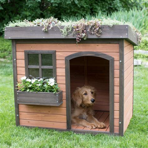 Green-Roof-Dog-House-Plans