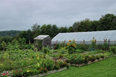 Green-Table-Farms