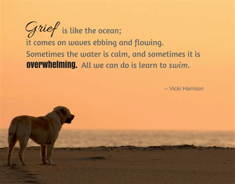 @ Grief After The Death Of A Beloved Pet.
