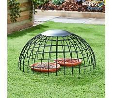 Best Ground bird feeder cage