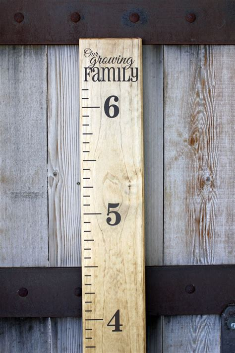 Growth Ruler Diy Youtube