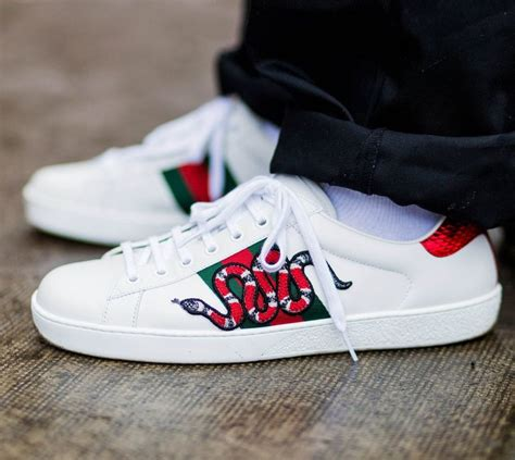 Gucci Ace Sneakers On Feet