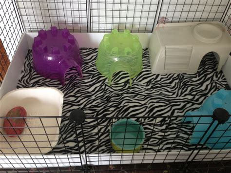 Guinea Pig Fleece Bed Diy Ideas