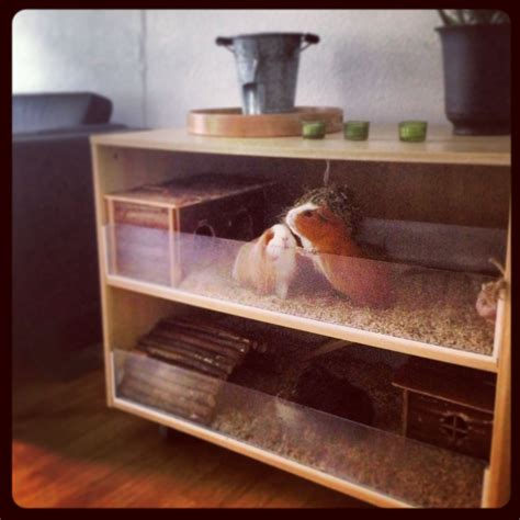 Guinea Pig Hutch Plans DIY Garage Wall