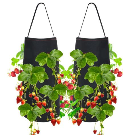 Hanging strawberry planters Image