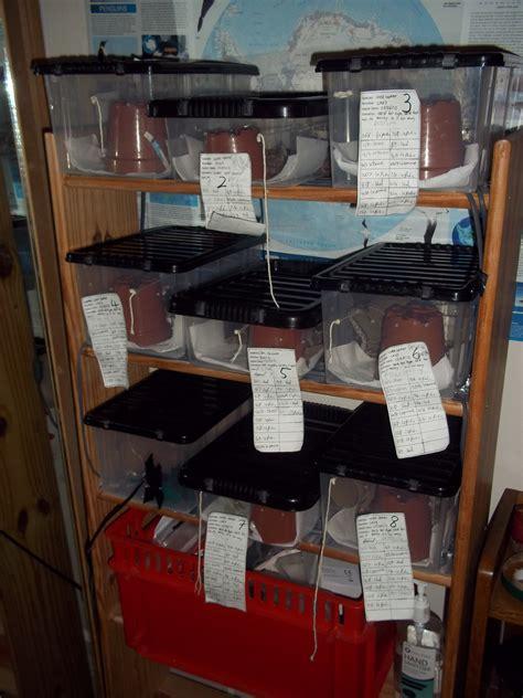 Hatchling-Rack-Plans