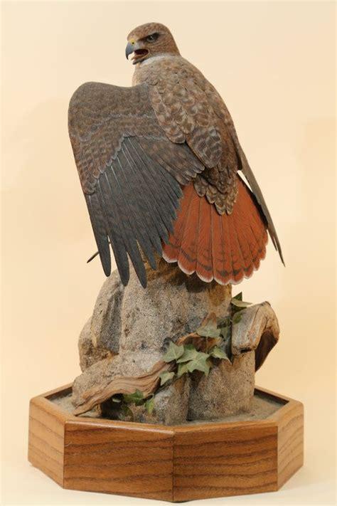 Hawk-Woodworking