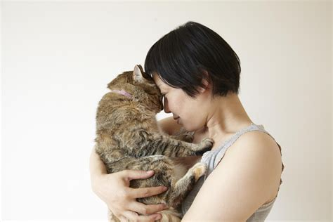 @ Helping Cats Cope With Loss Of Other Pets.