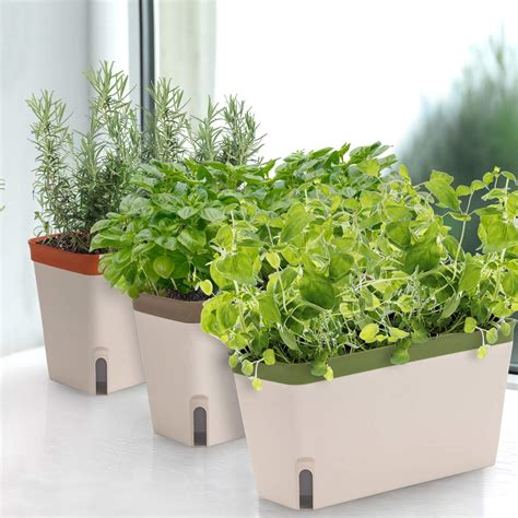 Herb Box Planter