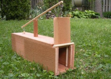 Homemade-Box-Trap-Plans