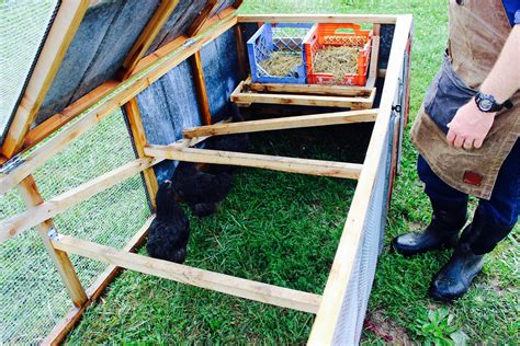 Homemade-Chicken-Tractor-Plans