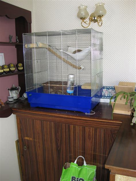 Homemade-Rat-Cage-Plans