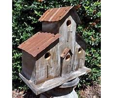 Best Homemade bird house for sale