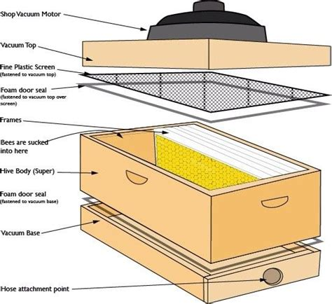 Honey Bee Vacuum Box Plans
