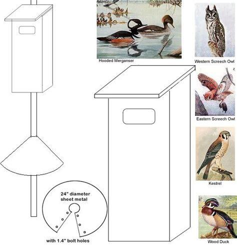 Hooded-Merganser-Bird-House-Plans