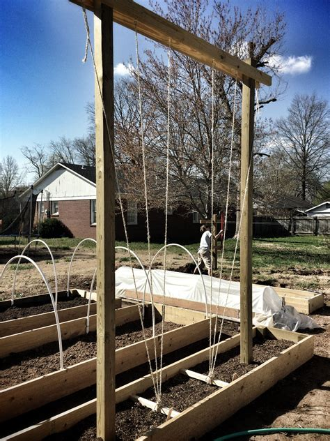 Hops-Trellis-Design-Plans