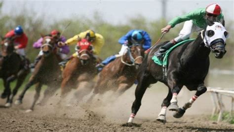 Horse Racing Progressive Betting System And How To Bet One Horse