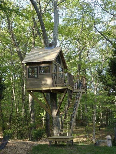 House-In-A-Tree-Plans
