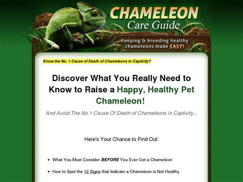 @ How Chameleon Care Guide - Only Product In Booming Niche .