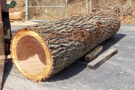 How Much Is A Cypress Log Worth