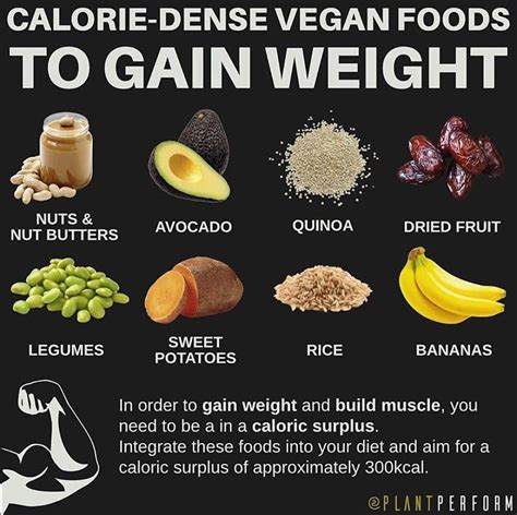 How To Avoid Weight Gain On A Vegan Diet