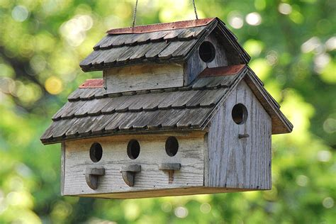 How To Build A Bluebird House Out Of Wood
