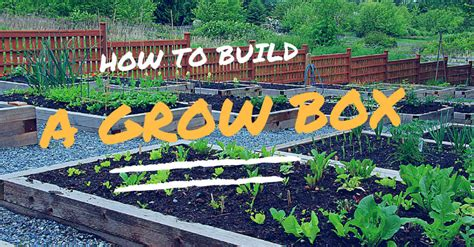 How To Build A Cheap Grow Box