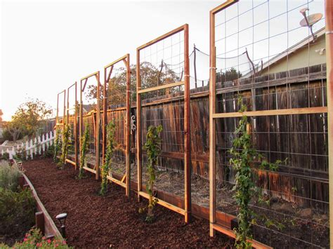 How To Build A Freestanding Trellis