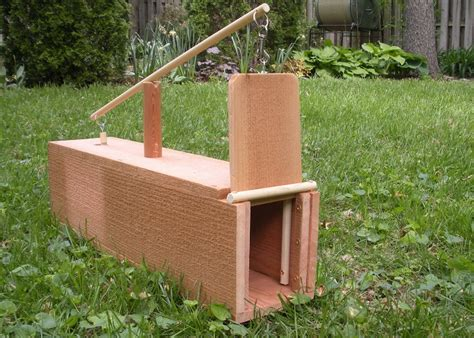 How To Build A Rabbit Box Trap Plans
