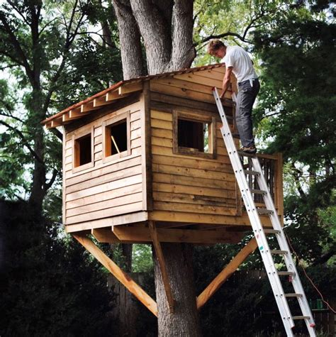 How To Build A Treehouse PDF