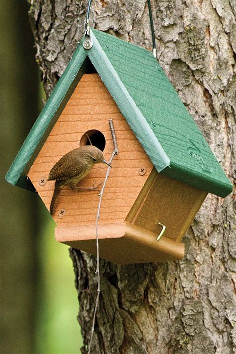 How To Build A Wren Bird Houses For Sale