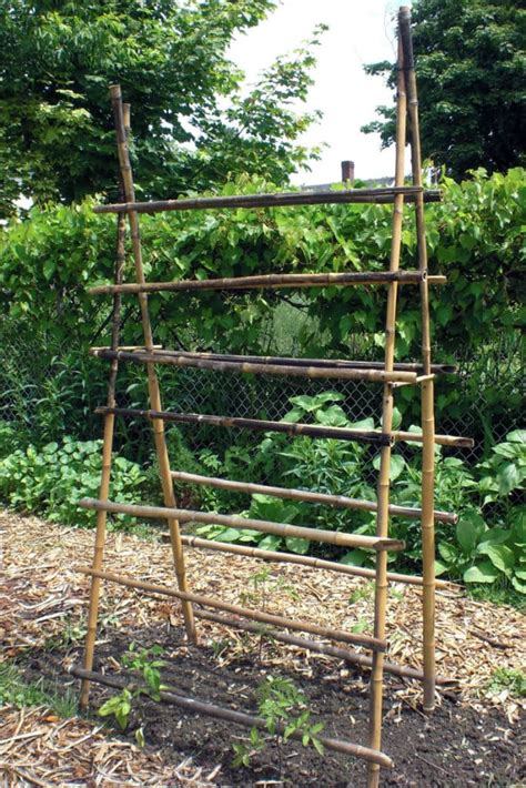How To Build An Arbor Trellis From Cut Trees