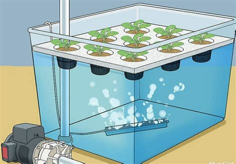 How To Build Hydroponic Grow Box