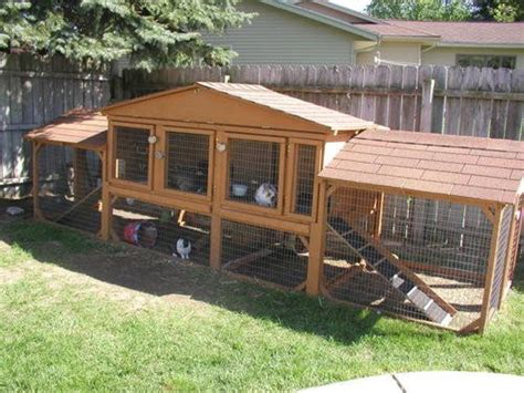 How To Build Outdoor Rabbit Cage