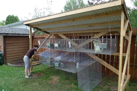 How To Build Rabbit Hutches Housing And Urban