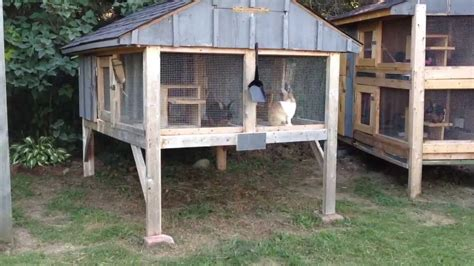 How To Build Rabbit Hutches Youtube Broadcast
