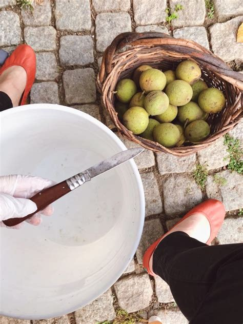 How To Clean Black Walnuts From Your Tree